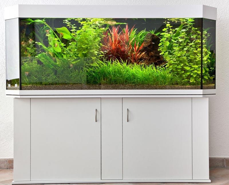 aquarienbau brillant aquarium aquariumbau profiline raumteiler panorama. Black Bedroom Furniture Sets. Home Design Ideas