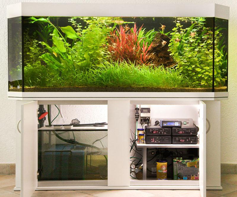 Aquariumbau Brillant ProfiLine Serie