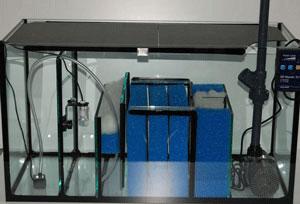 aquarienbau brillant aquarium mehr ber filterset s wasser. Black Bedroom Furniture Sets. Home Design Ideas